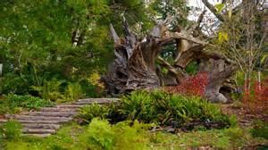 The Arboretum Morris Arboretum In Philadelphia Pennsylvania Expedia