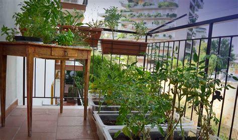 orto sul terrazzo di casa orto sul balcone gt gt oliomezzabarba
