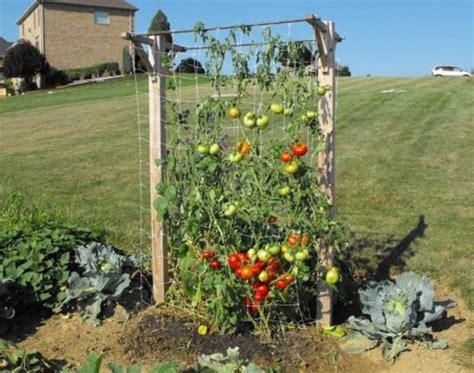 how to build a vertical vegetable garden total survival