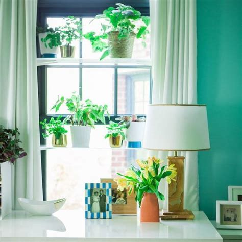 Window Shelf Decorating Ideas by Plant Shelves Decorating Ideas Quotes