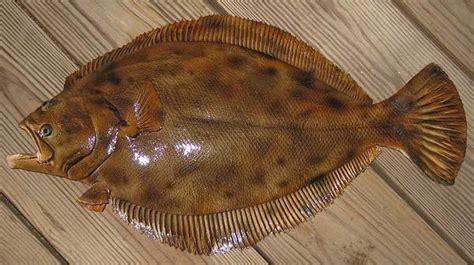 Birds Home Decor Flounder 24 Inch Half Mount Fiberglass Fish Replica The