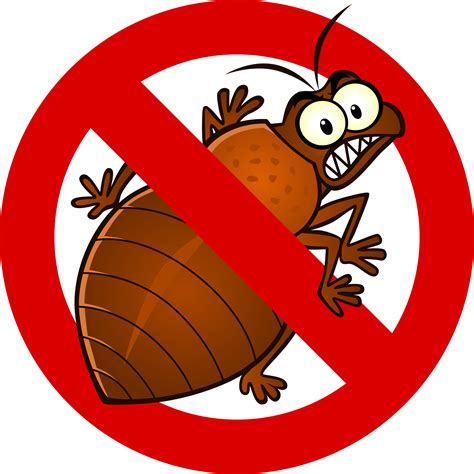 bed bug cartoon bed bug treatments exclusive pest control charleston sc