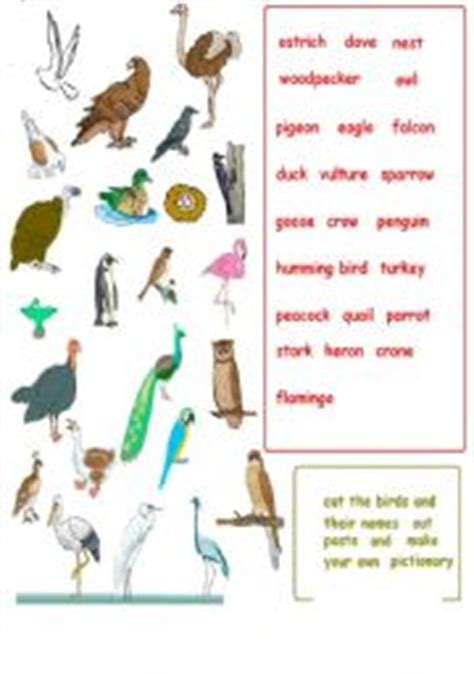make your own pictionary cards teaching worksheets pictionary