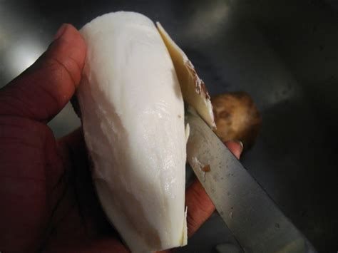 comment cuisiner manioc recettes du cameroun le manioc bouilli