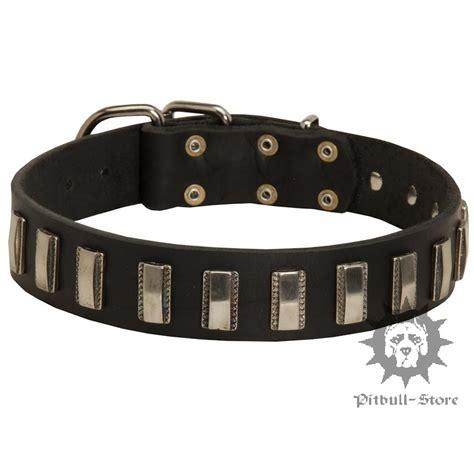 cool collars cool collar leather collar 2016 163 47 30
