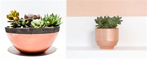 cool planters 100 cool planters cool indoor window planter 104