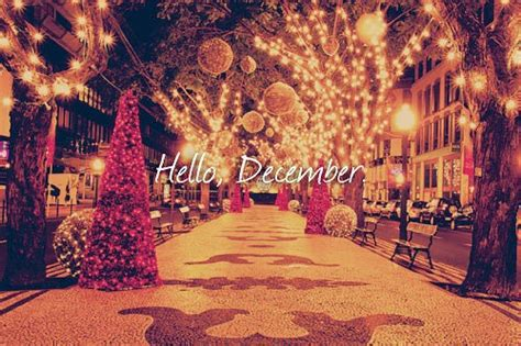 hello lights hello december image 1498964 by aaron s on favim