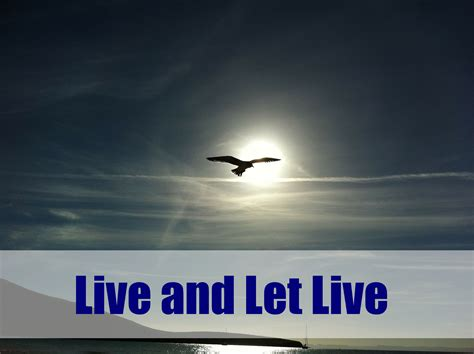 Live And Let Live Essay In by Live And Let Live The World Is What You Make It
