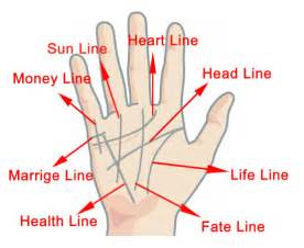 palm reading palmistry guide basics of