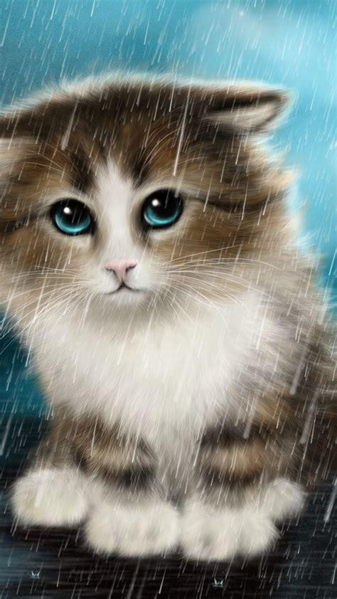 wallpaper cute cat innocent animals