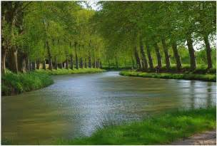 nature spring on the canal du midi picture nature