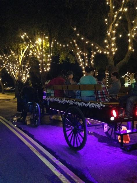 st augustine of lights carriage tour st augustine nights of lights tours wine carriage