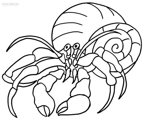 pet hermit crab coloring page coloring pages