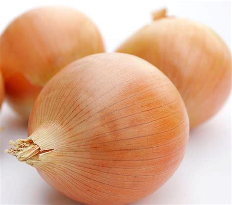 ung onion những loại rau củ gi 250 p ph 242 ng chống bệnh ung thư