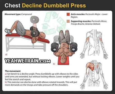 decline bench press muscles worked chest workout decline dumbbell press healthy fitness