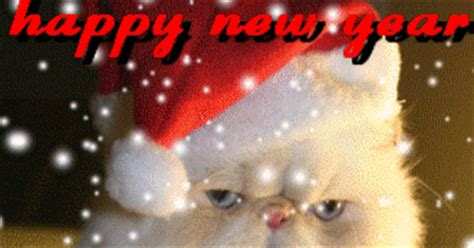 animated  gif  gif animation  cards  gif animated kitty cat santa claus happy