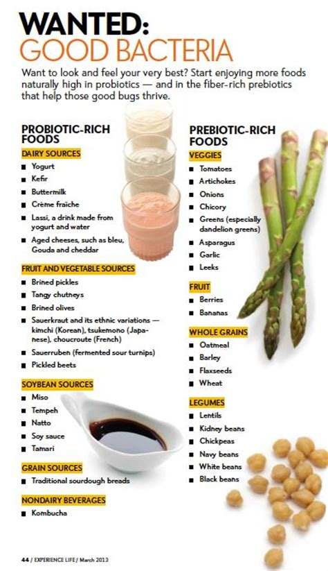 food with probiotics best probiotic food and probiotics on