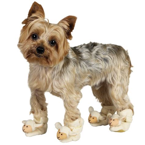 house shoes for dogs white lamb dog slippers theinus