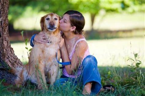 giochi di portare a spasso i cani dimagrire meglio portare il a spasso ore in