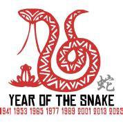 year of the snake year of the snake t shirt spreadshirt