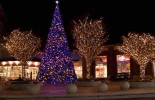 tree light tips light trees outdoor 10 tips for buyers