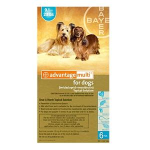 advantage multi for dogs 6 pack advantage multi for dogs 9 20 lbs 6 month teal supply vetdepot