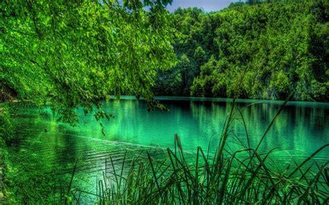 imagenes bellas naturaleza bellas im 225 genes de la naturaleza taringa