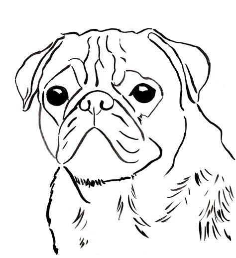 free to home pug free pug coloring page to and print