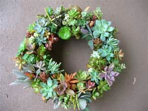 succulent wreath wreaths pinterest