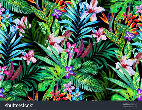 tropical design tropical wallpapers photography hq tropical pictures