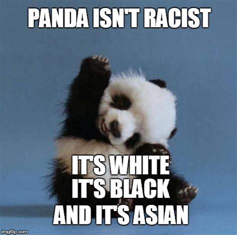 30 very funny panda memes images graphics gifs picsmine
