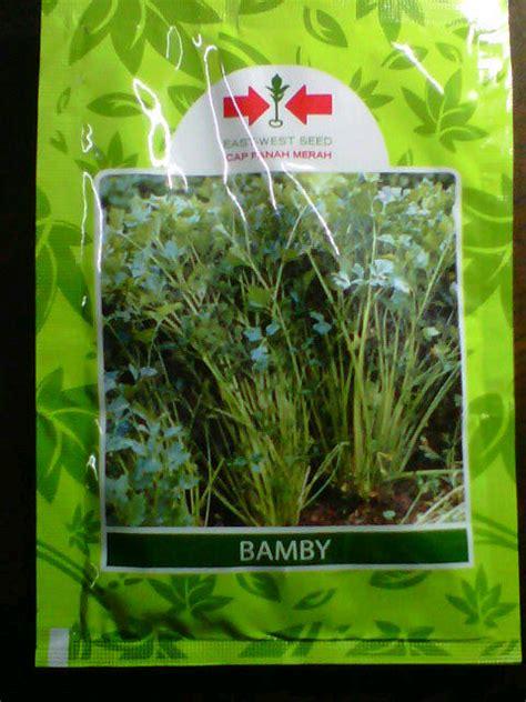 Bibit Seledri Panah Merah bibit seledri bamby