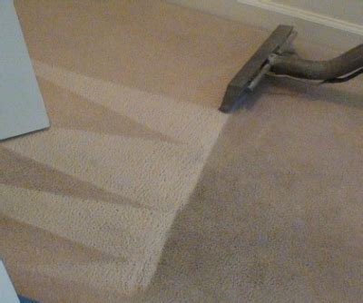 eddy rug cleaners carpet cleaning tx carpet menzilperde net