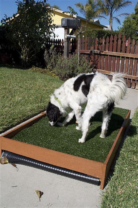 diy draining patio potty petdiys
