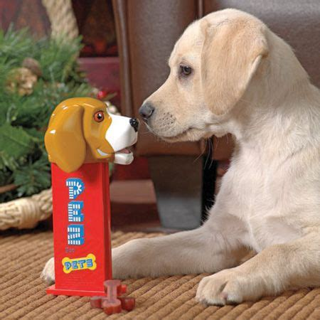shelterpups stuffed price 25 howliday gift ideas for your