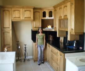 Pictures Kitchen Cabinets Kitchen Cabinet Pictures And Its Importance Mycyfi Com