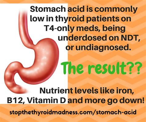 Stomach Acid In Stool by 181 Best Thyroid Graphics Memes To Images On