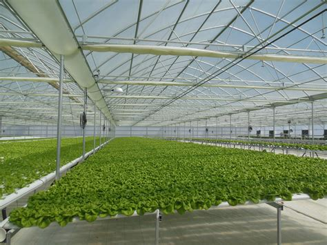 Go Green House Plans by Range Of 8 Agra Tech Continental Greenhouses At Gogreen
