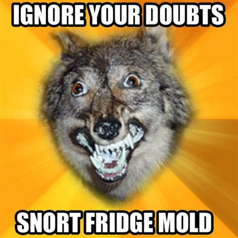 Courage Wolf Meme - courage wolf meme google search funny pinterest