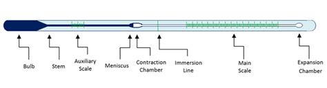 clinical thermometer labeled diagram the anatomy of a liquid in glass thermometer