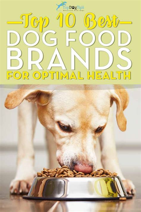 top 10 foods for puppies top 10 foods analysis what is the best food brand in 2018
