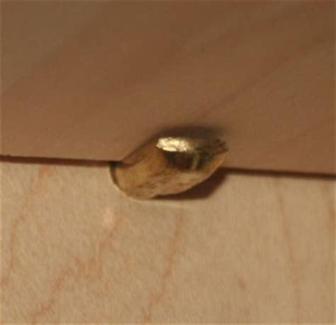 kitchen cabinet shelf pins 28 kitchen cabinet shelf pins shelf supports holder