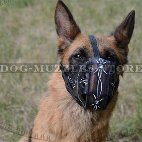 best muzzle best muzzle for working