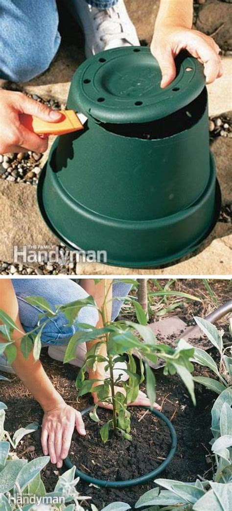35 creative garden hacks tips that every gardener