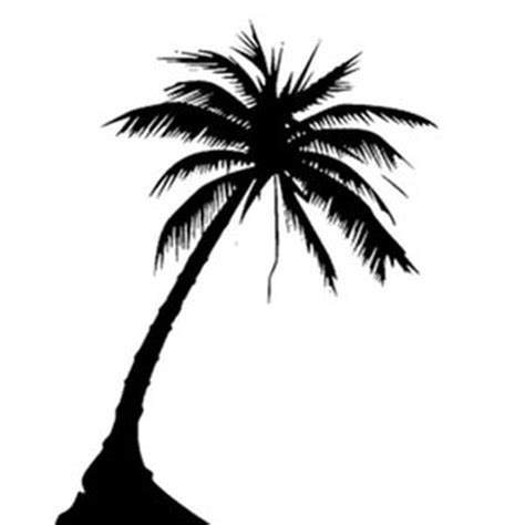 13 lovely palm tree tattoos designs