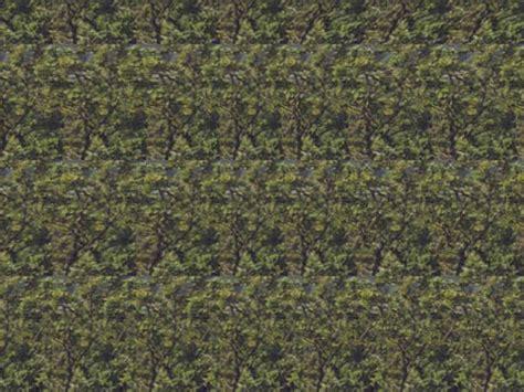 descubrir imagenes ocultas en 3d 191 puedes descubrir qu 233 hay oculto en cada imagen 3d
