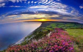 Pretty Flowers In French - coastline full hd wallpaper and background 1920x1200