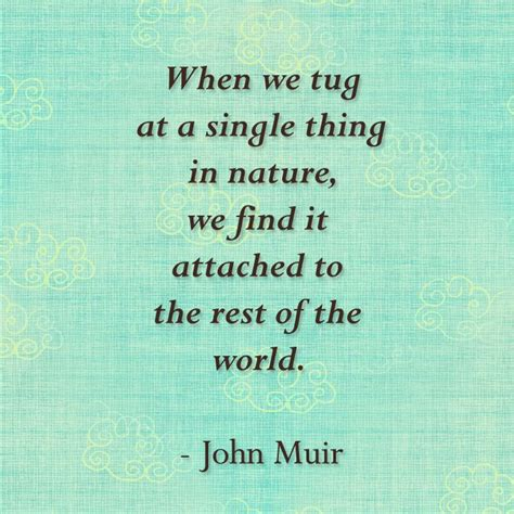 muir quotes muir quote ideas