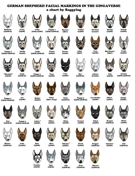 german shepherd color changes german shepherd markings in the gingaverse by