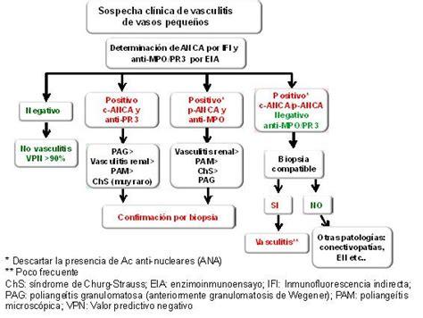 Contributing To Disease Awareness Is Haute Stuff by Algoritmo Antiproteinasa Jpg 566 215 426 P 237 Xeles